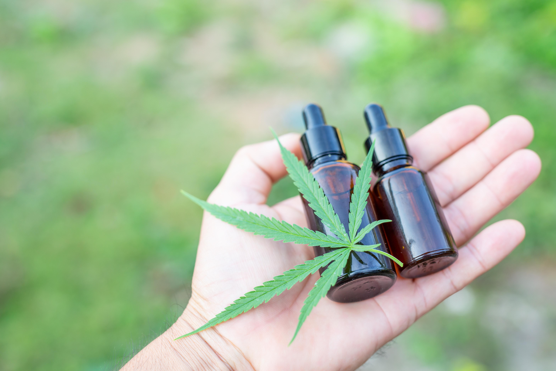 cannabis-oil-cbd-oil-cannabis-extract-medical-cannabis-concept
